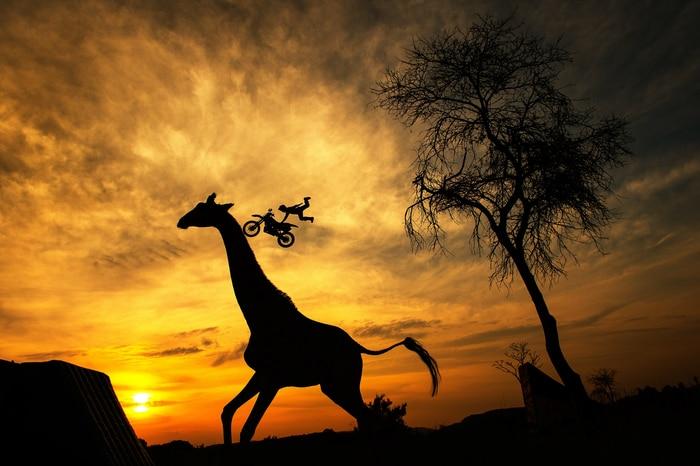 Maikel Melero - Safari Park Outside Pretoria, South Africa
